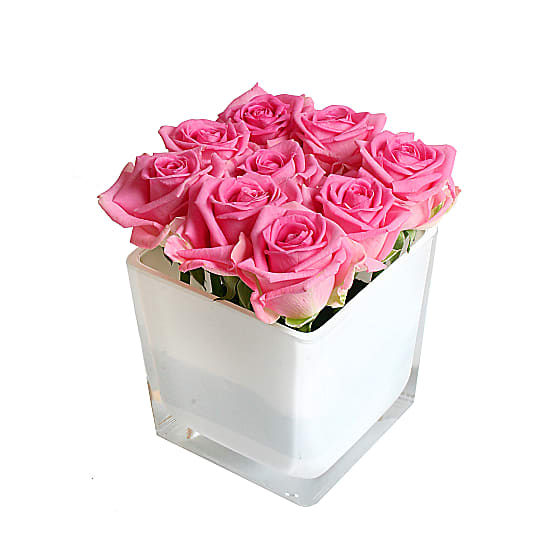 Pink Roses Cube