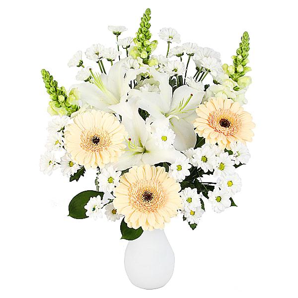 Gerbera Sympathy Bouquet
