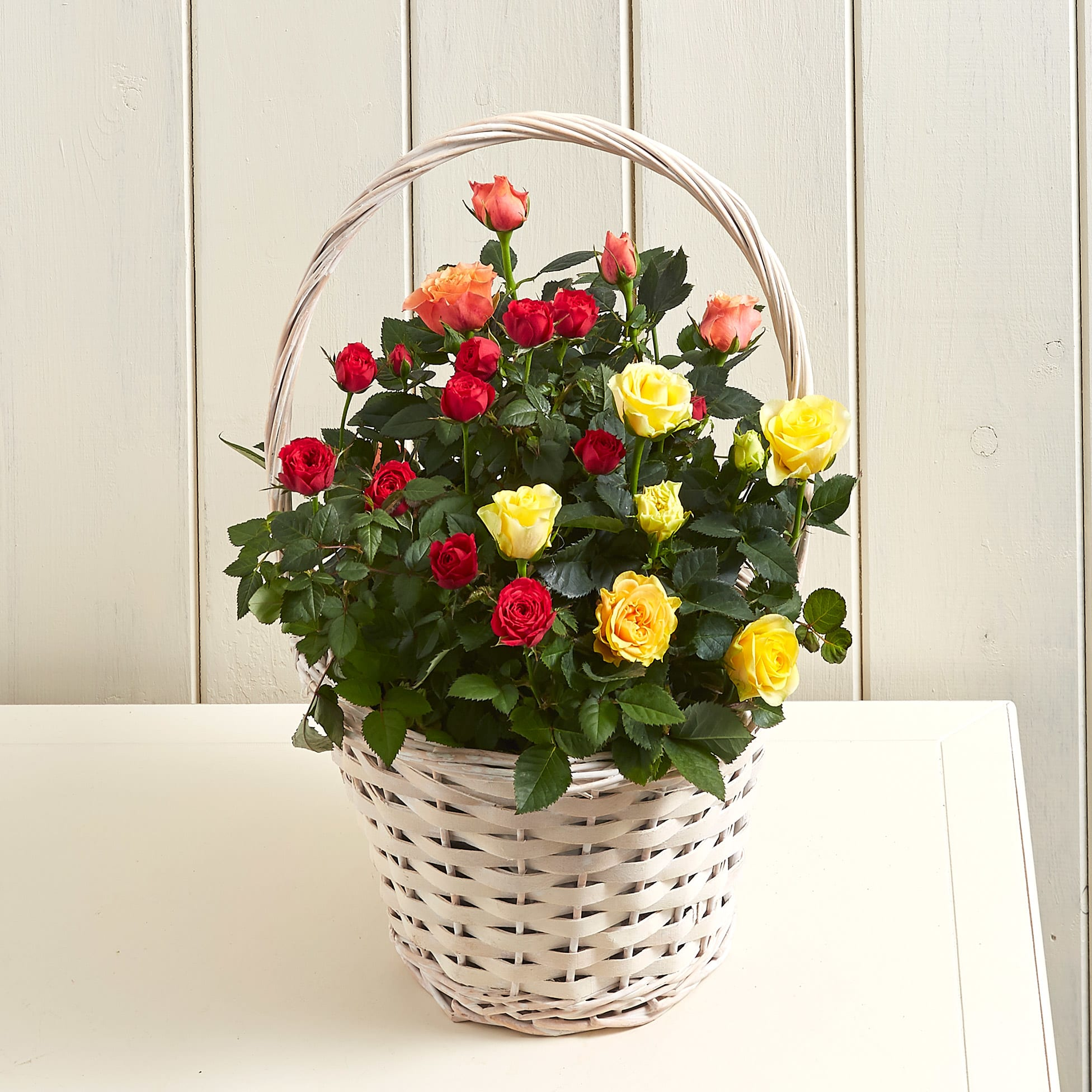 Sunset Rose Basket