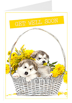 Greeting card Get Well Soon...