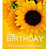 Happy Birthday Sunflowers