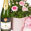 Baby Girl Rose Gift with Champagne