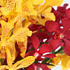 Red and Yellow Mokara Orchids