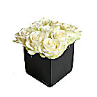 Roses Blanches en Cube