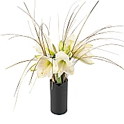 Flower bouquet White Amaryllis