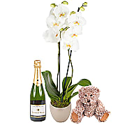 Flower bouquet New Baby Orchid Gift Set with Champ...