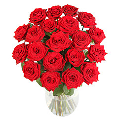 Flower bouquet 20 Luxury Red Roses