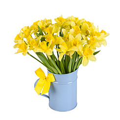 Flower bouquet UK Daffodils with Jug