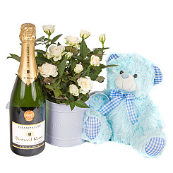 Plant arrangement Baby Boy Rose Gift with Champagne