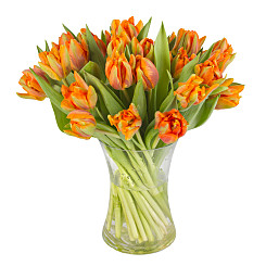 Flower bouquet 30 Orange Tulips with Vase