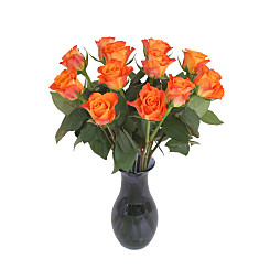 Flower bouquet A Dozen Orange Roses Giftwrap