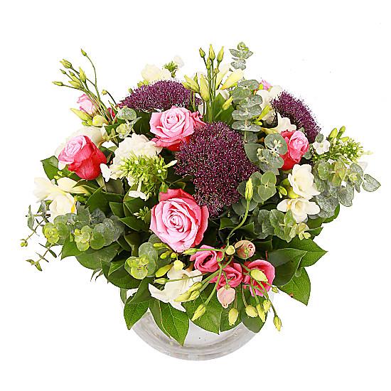 Serenata Flowers Miss Elizabeth Bennett Picture