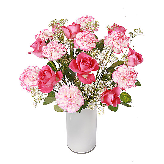 Serenata Flowers Rose and Carnation Picture