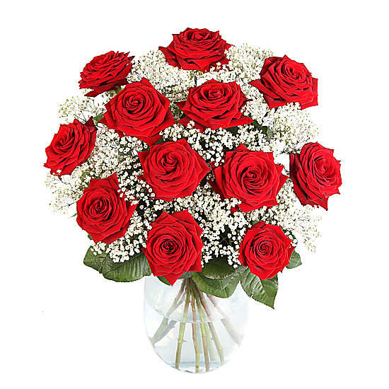 Serenata Flowers 12 Luxury Red Roses with Gyp Picture