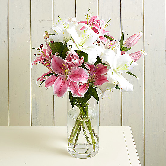 Serenata Flowers Lush Lillies Picture