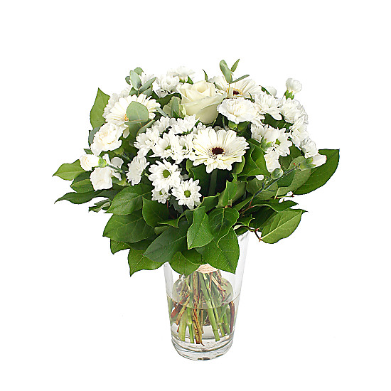 Serenata Flowers Heavenly White Picture
