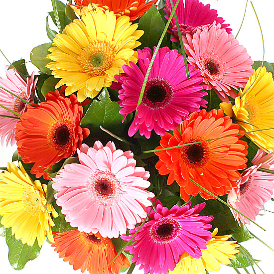 Gerbera bouquet delivered next day for Bouquet de fleurs gerbera