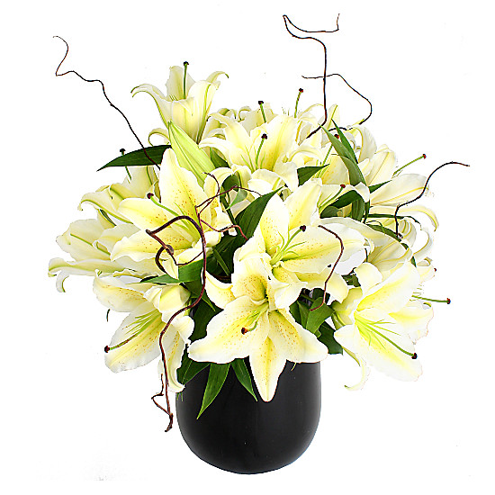 Serenata Flowers White Lily Bouquet Picture