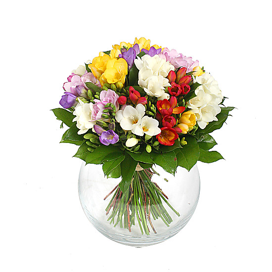 Serenata Flowers Freesia Bouquet Picture