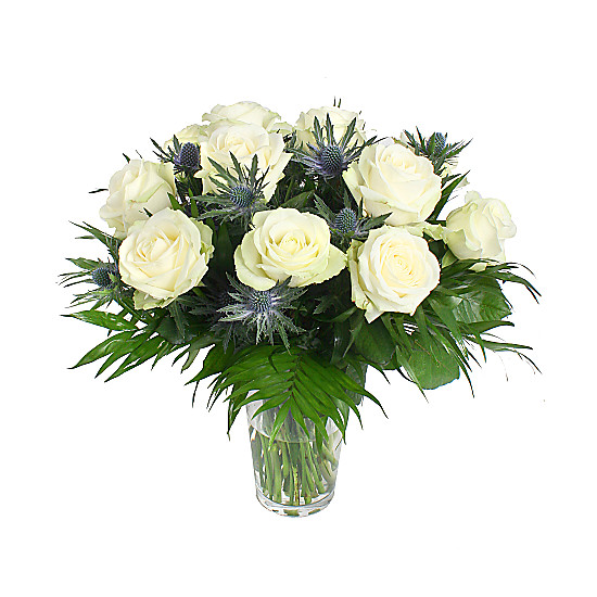 Serenata Flowers A Dozen White Roses Picture