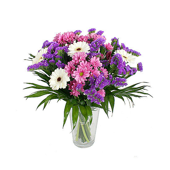 Serenata Flowers Purple Blaze Picture
