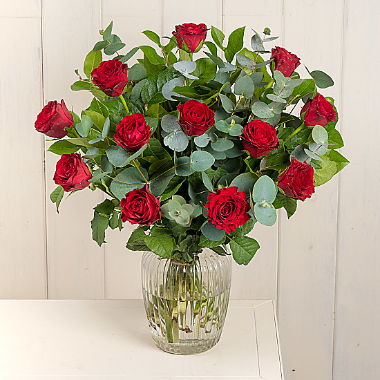 Serenata Flowers A Dozen Red Roses Picture