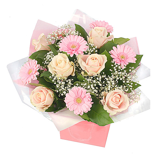 Serenata Flowers Peach Beauty Picture
