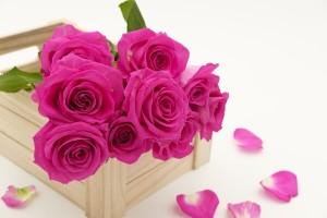 Des fleurs pour un cadeau d'anniversaire, une merveilleuse idée