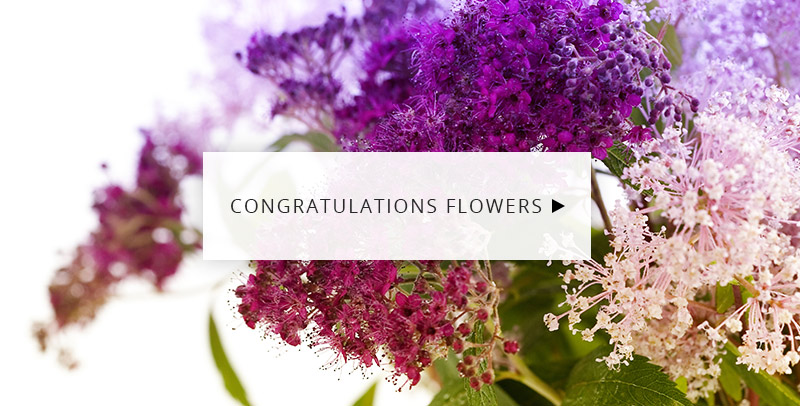 Congratulations Flowers