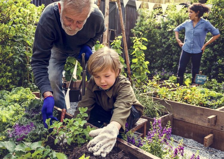 family doing gardening outside
