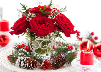 Potted Red Roses in a festive planter