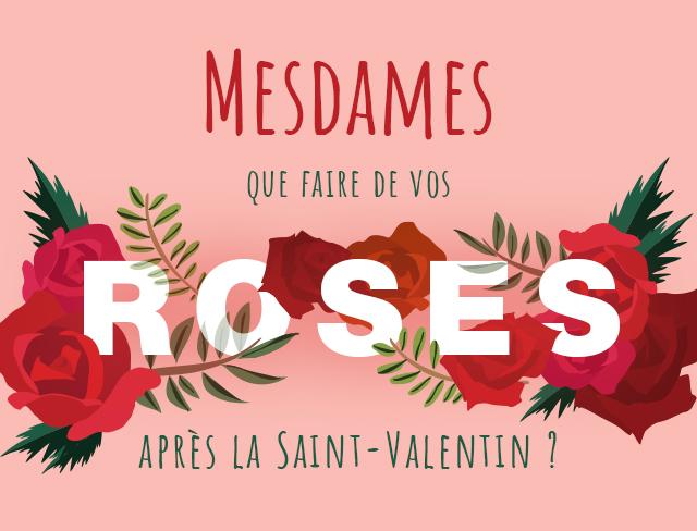 mesdames que faire de vos roses apres la saint valentin closion. Black Bedroom Furniture Sets. Home Design Ideas
