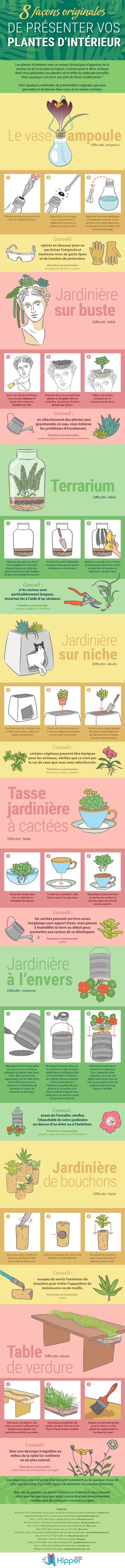 8 Façons de Présenter vos Plantes d'Intérieur