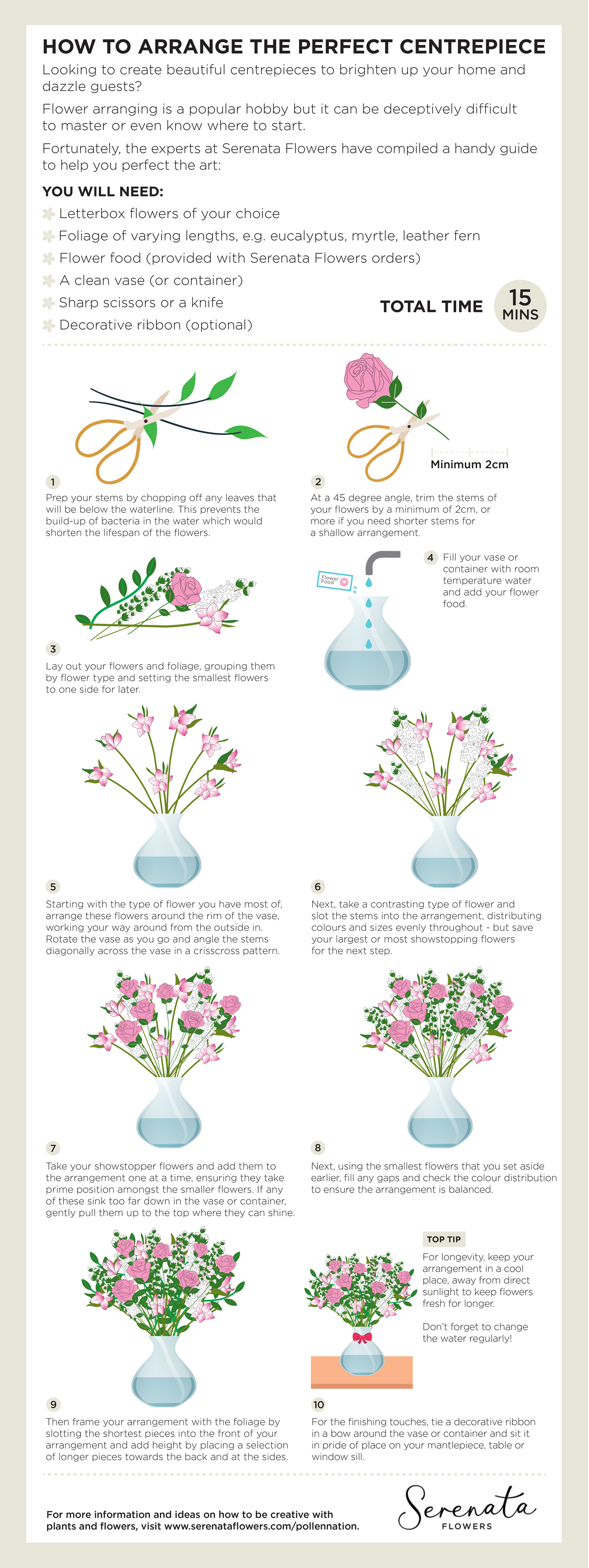 Hobby Nation Infographic by Serenata Flowers